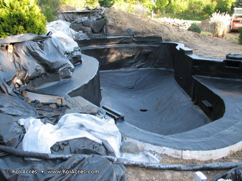 Koi pond construction for Koi pond builder