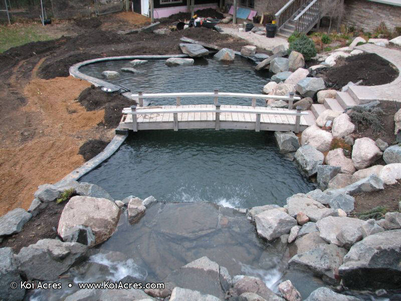 Koi pond construction for Wooden koi pond construction