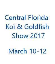 2017 Orlando Koi and Goldfish Show
